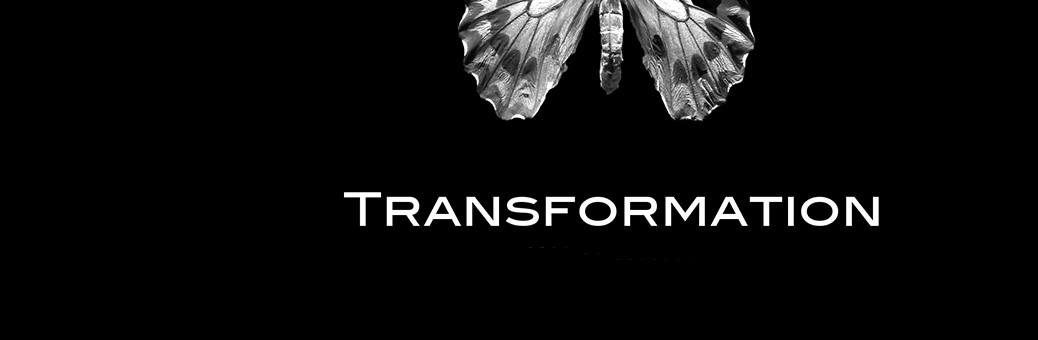 1140Dark Insight — Transformation