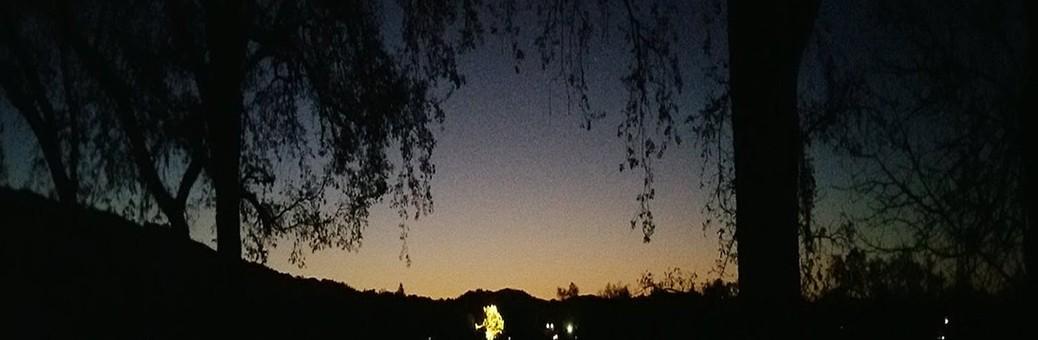 1140Widdendream - In The Night