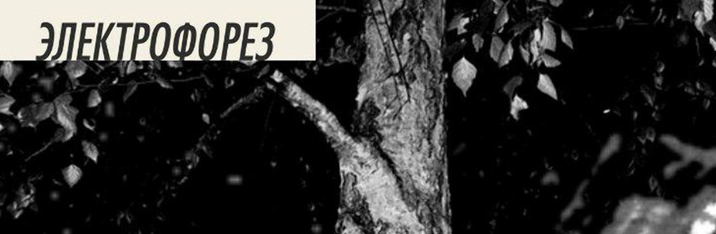 1140Электрофорез — EP#5