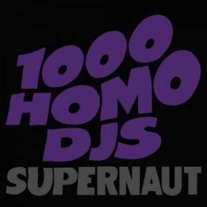 1000 Homo DJs